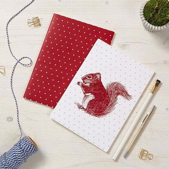 Picture of Red Squirrel - Notebook