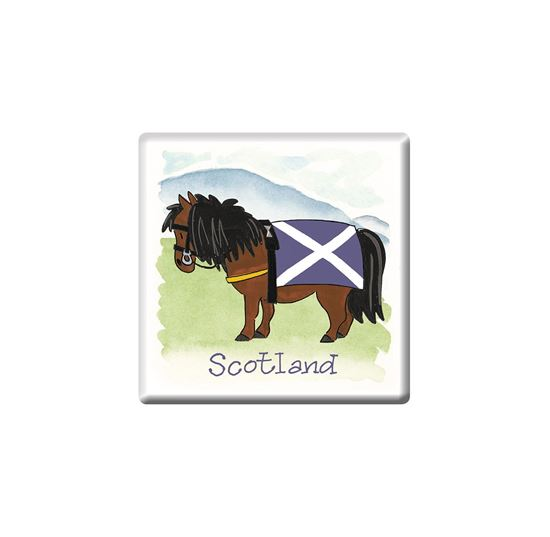 Picture of Magnet Scottish Pony
